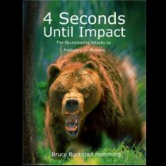 4 seconds until impact
